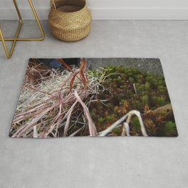 Dry Grass, Moss, and Rock Rug