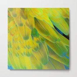 Wonderful parrot plumage Metal Print