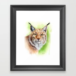 Lynx Watercolour Painting Framed Art Print