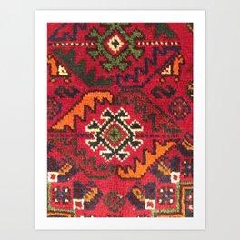 Gashgai detail Art Print