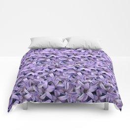 East Side Beauty Comforters