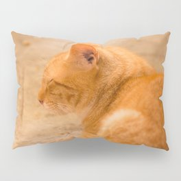 Orange Cat Resting On The Terrace #decor #society6 #buyart Pillow Sham