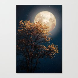 Under Full Moon Canvas Print