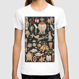 Albert Racinet - Chinese pattern from L'ornement Polychrome T-shirt