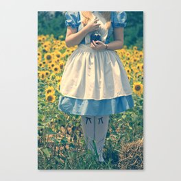 If I Had A World Of My Own... Canvas Print