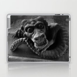 Stone Dragon Laptop & iPad Skin