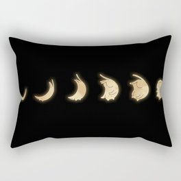 Cat Landscape 57: Phases of the Meow Rectangular Pillow