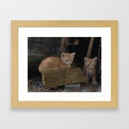 More Kitty Kats!!! Framed Art Print