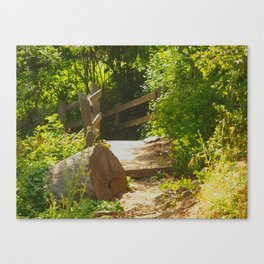 Scenic Sunny Selby - Tilden Park Canvas Print