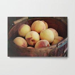 Peaches in a Basket Metal Print