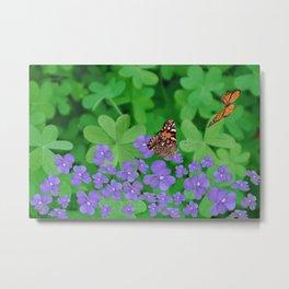 Butterfies, Violets & clover Metal Print