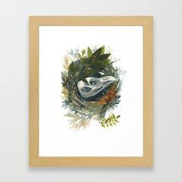Nest Study 1 Framed Art Print