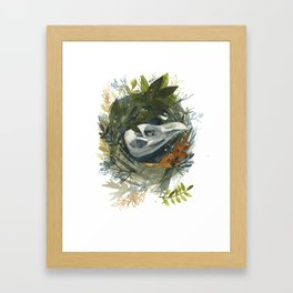 Nest Study 1 Framed Art Print