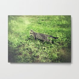 Cat on the Prowl Metal Print