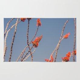 Ocotillo in Bloom Rug