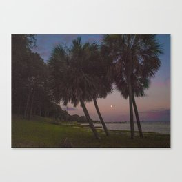 Strawberry Moon Canvas Print