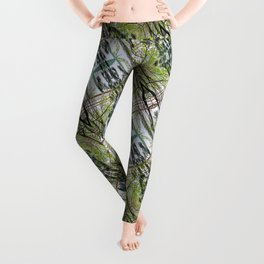 RAINY SPRING DAY AT THE DOCK IN THE WOODS Leggings