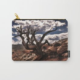 Cassidy Arch Trail Carry-All Pouch