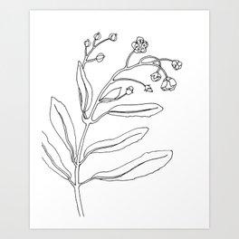 Minimal Bloom Art Print