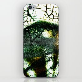 Cina iPhone Skin