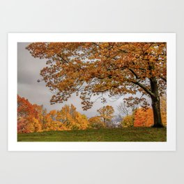 Brookline, Summer street view of fall Art Print