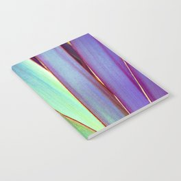 Fiesta Palm Notebook