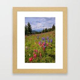 SHRINE RIDGE COLORADO SUMMER PHOTO -  MOUNTAIN IMAGE - WILDFLOWERS PICTURE - LANDSCAPE PHOTOGRAPHY Framed Art Print