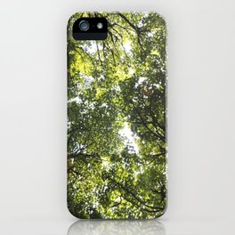 Looking up at the Trees iPhone Case