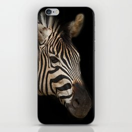 Portrait of Zebra iPhone Skin