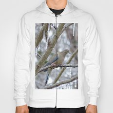 Mourning Dove Hoody