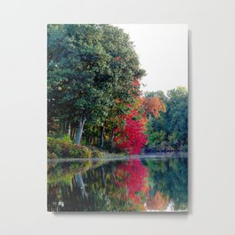 First reds of autumn Metal Print