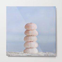 Pink sea cairn ocean urchins Metal Print