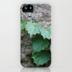 Granite Ivy Slim Case iPhone (5, 5s)
