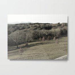 Biltmore Estate Landscape Black and White Metal Print