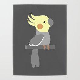 Cute cockatiel Poster