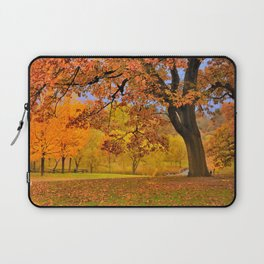 Fall at Larz Anderson Laptop Sleeve