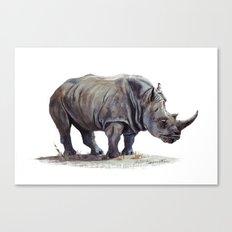 Rhinoceros painting Canvas Print