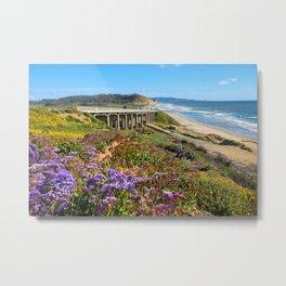 Del Mar springtime coastline Metal Print