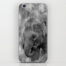 Hi Way Calf  iPhone & iPod Skin