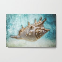 Aquatic Dreams One Metal Print