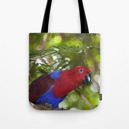 Eclectus Parrot Tote Bag