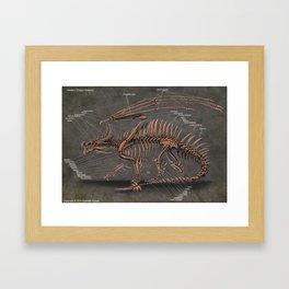 Western Dragon Skeleton Anatomy Framed Art Print