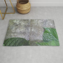 Urban Plant hydrangea leaves on concrete wall Rug