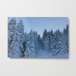 Vitosha Mountain in the winter, Bulgaria Metal Print