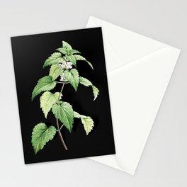 Vintage White Dead Nettle Plant Botanical Illustration on Black (Portrait) Stationery Cards