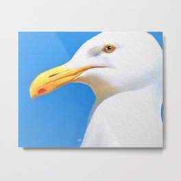 Portrait of a seagull Metal Print