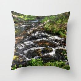 Oak Creek II Throw Pillow