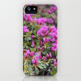 Welcome Happy Spring iPhone Case
