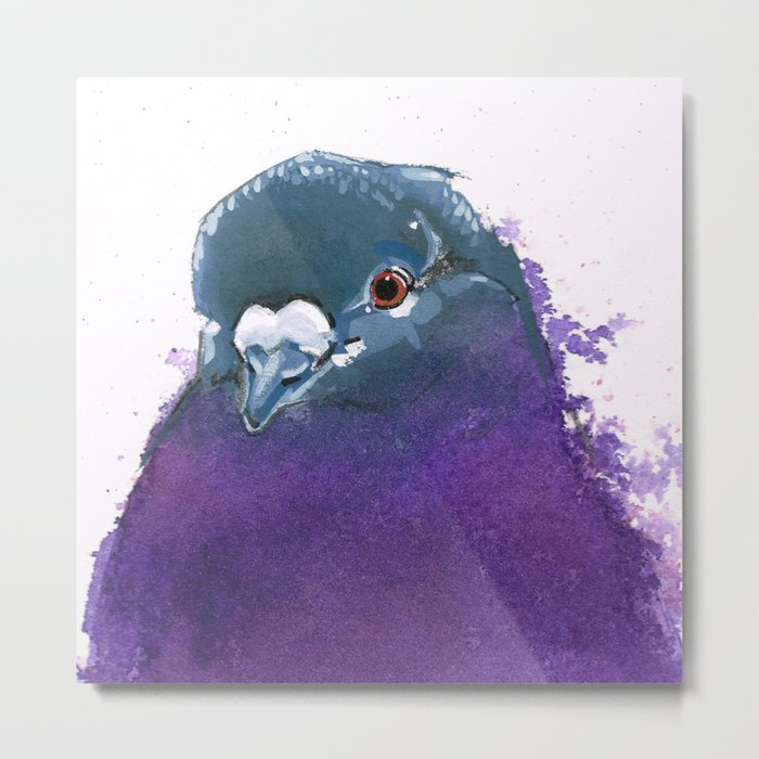 Purple Pigeon Metal Print