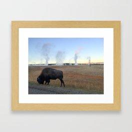 Bison Springs Framed Art Print